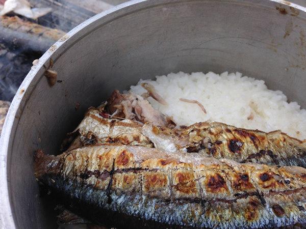 炊きたてご飯に七輪焼き秋刀魚をのせる