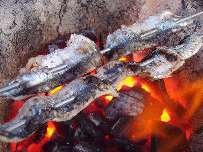 カタクチイワシの七輪炙り焼き、塩コショウ